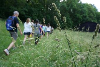 Morven Summer Institute 2017 hike, exploring its many acres, before camping out on the property.